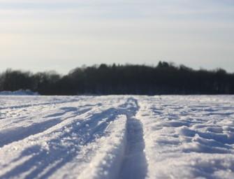 Skilanglaufbindung – TOURING CLASSIC NIS von Fischer