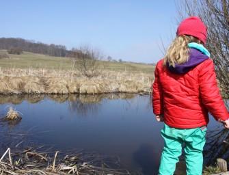 Wanderung Moor Schopfloch
